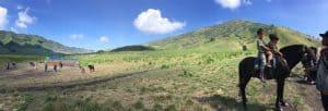 Bukit Teletubies Bromo